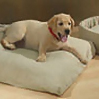 omi green pet bed.jpg