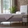 nature mattress purelatexbliss allnatural nvm9379.jpeg
