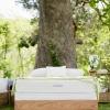 serenity latex mattress savvy rest outdoor vertical.jpg